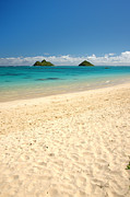 Seascape Prints - Lanikai Beach 2 - Oahu Hawaii Print by Brian Harig