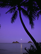 Jpeg Photo Prints - Lanikai Moonrise Print by Douglas Peebles