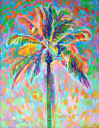 Featured Originals - Lanikai Palm by David Friedman