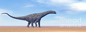 Three Dimensional Posters - Large Argentinosaurus Dinosaur Walking Poster by Elena Duvernay