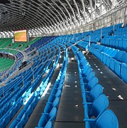 Stadium Design Art - Large Modern Sports Facility by Yali Shi
