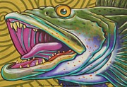 Large Mouth Framed Prints - Large Mouth Fish Framed Print by Unknown