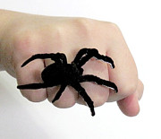 Black Ring Jewelry - Large Spider Ring by Rony Bank