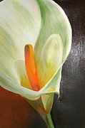Tracey Harrington-Simpson - Large White Calla