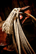 Rope Framed Prints - Lariat on a Saddle Framed Print by Olivier Le Queinec