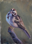 Little Birds Paintings - Lark Sparrow by Billie Colson