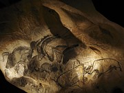 Horse Drawings Photo Prints - Lascaux Cave Paintings France Print by Spl
