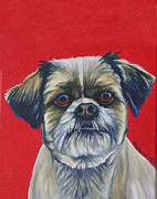 Lasso Paintings - Lasso-apso   by Louise Hallauer