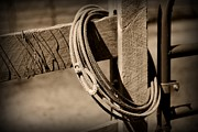Roping Horse Prints - Lasso on Fence Post Rustic Print by Paul Ward