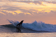 Surf Lifestyle Photos - Last Blast by Paul Topp
