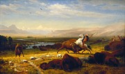 Bierstadt Prints - Last Of The Buffalo Print by Albert Bierstadt
