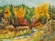 Lynne Haines - Latah Creek Fall Colors