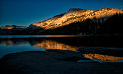 Lake Art - Late Afternoon at Tenaya by Cat Connor