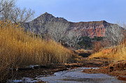 Karen Slagle - Late Fall in Palo Duro...