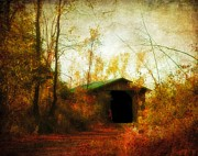 Nature Scene Digital Art Metal Prints - Late October Metal Print by Gothicolors And Crows