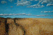 Allan OMarra - Late Summer Field...
