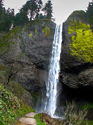 Waterfall Photography Posters - Latourell Falls Poster by Robert Bales