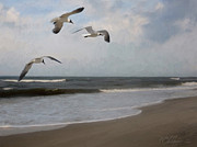 Forest Stiltner - Laughing Gulls Over Nags...