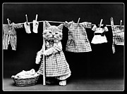 Funny Cat Framed Prints - Laundry Time Framed Print by Harry Whittier Frees