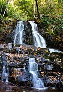 Gatlinburg Tennessee Prints - Laurel Falls Print by David Morgan