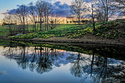 Sloping Prints - Laurel Ridge Reflections Print by Thomas Schoeller