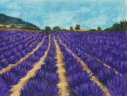 Landscape Prints Pastels Framed Prints - Lavender Afternoon Framed Print by Anastasiya Malakhova