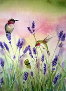 Flower Field Paintings - Lavender And Hummingbirds by Patricia Pushaw