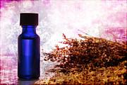 Lavender Essential Oil Bottle Print by Olivier Le Queinec