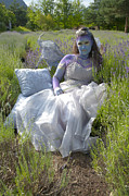 Human Beings Originals - Lavender Fairy Queen by Graham Foulkes