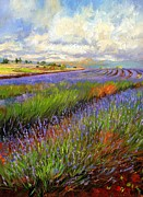 Mauve Posters - Lavender Field Poster by David Stribbling