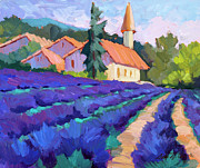 Diane McClary - Lavender Field in St. Columne