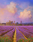 Tuscan Sunset Prints - Lavender Fields Provence Print by R christopher Vest