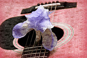 Pink And Lavender Prints - Lavender Iris And Acoustic Guitar - Texture - Music - Musical Instrument - Painterly - Pink  Print by Andee Photography