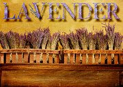 Baskets Digital Art Posters - Lavender Poster by Karen  Burns