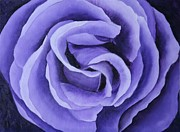 Marsha Thornton - Lavender Rose