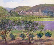 Farm Fields Paintings - Lavender Seen Through Quince Trees by Timothy  Easton