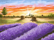 Lavender Digital Art Framed Prints - Lavender Framed Print by Veronica Minozzi