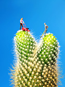 Children Digital Art Originals - Lawn mowing on cactus by Paul Ge