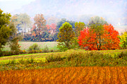 Randall Branham - layered farm scene