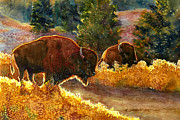Dakota Painting Metal Prints - Lazy Afternoon Custer State Park SD Metal Print by Marguerite Chadwick-Juner