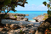 Grand Barbados Framed Prints - Lazy Cove Framed Print by Carey Chen