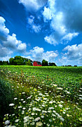 Phil Koch - Lazy Days of Summer