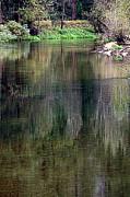 Lynn Bawden - Lazy River