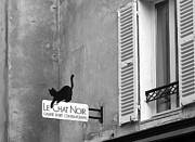 Paris Black Cats Framed Prints - Le Chat Noir Framed Print by Nikolyn McDonald