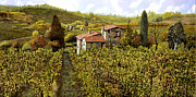 Brunello Framed Prints - Le Vigne Toscane Framed Print by Guido Borelli
