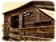 Rundown Barn Framed Prints - Leading to the Barn Framed Print by Jo-Anne Gazo-McKim