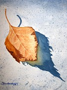 Portrait With Still Life Prints - Leaf With Shadow Print by Barbara Pelizzoli
