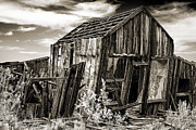 Haunted Shack Prints - Leaning cabin in Randsberg Print by Kim M Smith