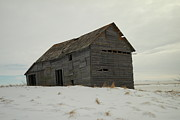 Old Barns Photo Prints - Leaning On Borrowed Time Print by Jeff  Swan