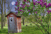 Leaning Outhouse Print by David Simons